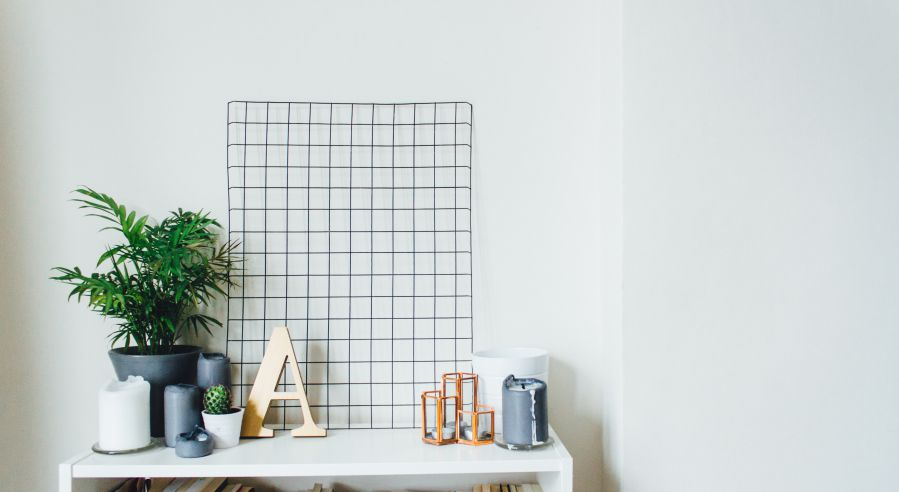 Plants for purifying air in baby's room